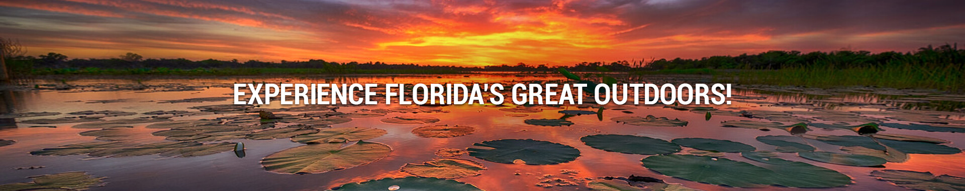 Experience Florida's Great Outdoor!
