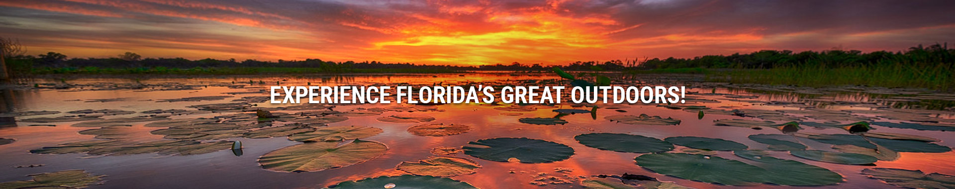 Experience Floridas Great Outdoors!