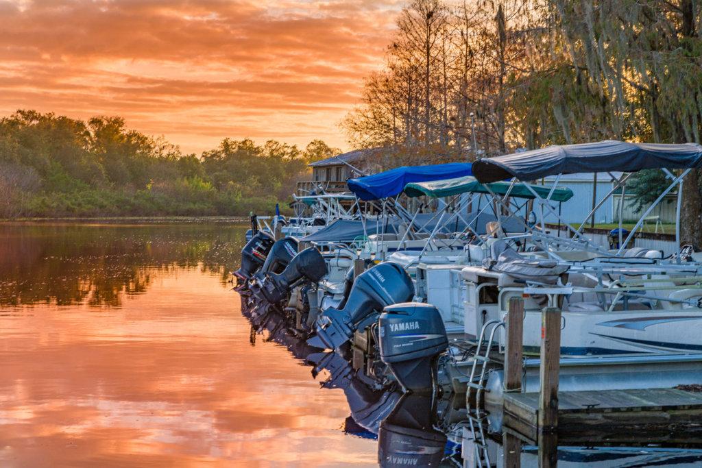 Our Lakes & Wildlife
